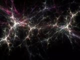 Law of Dimensional Paradox