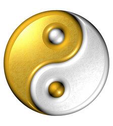 Yin - Yang, Computer generated image