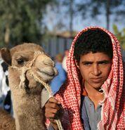 Beduin-6516