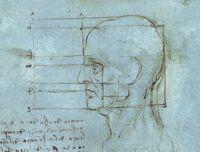 Naukowa wersja głowy Leonarda da Vinci