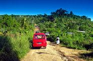 Vanuatu - plantacja