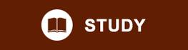 StudyHeading
