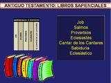 Libros sapienciales