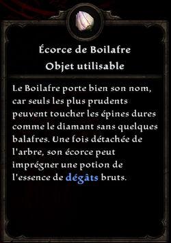 Ecorce de Boilafre