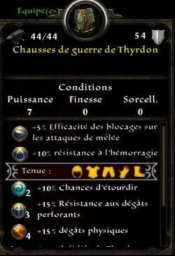 Chausses thyrdon