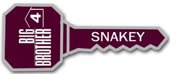Snakeykey