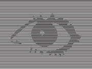 VBB1 Eye