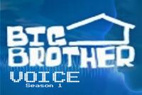 Big Brother Voice Season 1 Smaller
