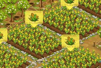 File:Seeds-corn.png