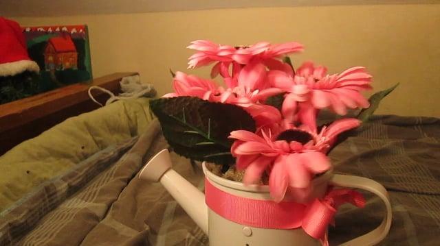 Gemmy Dancing Flowers Pink Gerbera Daisies in watering can
