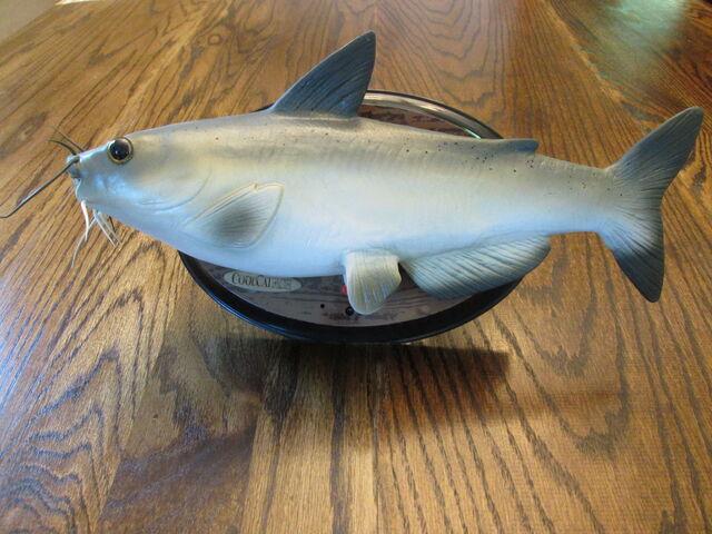 File:Custom-CoolCatfish.JPG
