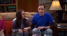 Sheldon amy hands
