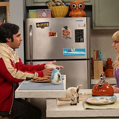 Raj talking to Bernadette.