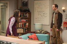 Sheldon-Amy