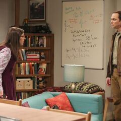 Sheldon and Amy's first living-together fight.