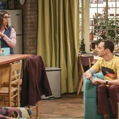 Will Amy vote against Sheldon?