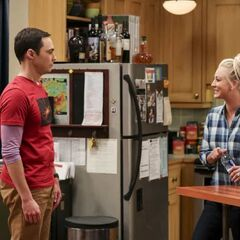 Sheldon talks to Penny about Bert's work.