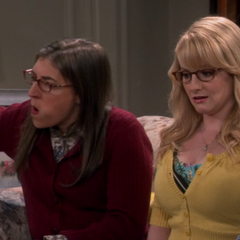 Sheldon just insulted Amy.