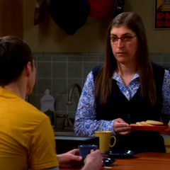 Sheldon telling Amy about investing in Stuart's comic book store.