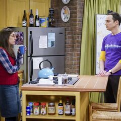 Sheldon and Amy going to work together.