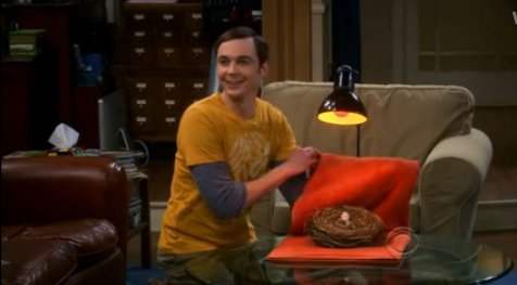 File:Sheldon with the egg.jpg