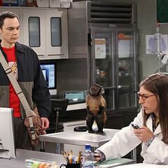 Sheldon telling Amy that she can now drive him home.