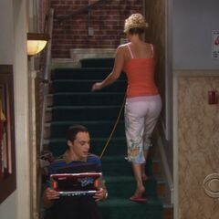 will sheldon and penny ever hook up