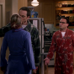Sheldon saving their marriage.
