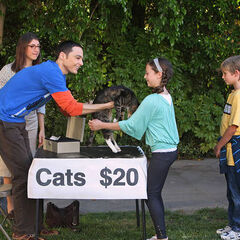 Amy helps Sheldon gives his cats away.