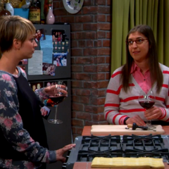 Amy suggests moving into Emily's life and pretend to be her best friend like Amy did to Penny.