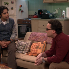 Leonard asks Raj to add Penny to the comet paperwork.