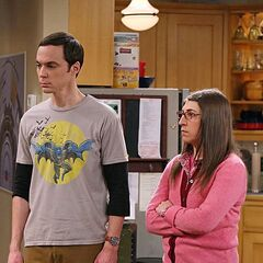 Amy backing up Sheldon about the table.