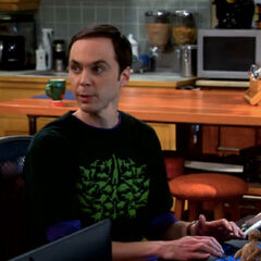 Sheldon on his computer.