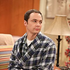 Sheldon improving his mind.