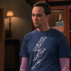 Sheldon doesn't want to be on the submission without Amy.