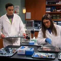 Sheldon cleaning glassware.