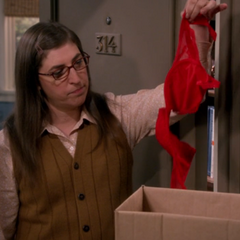 This red bra is not Amy's.