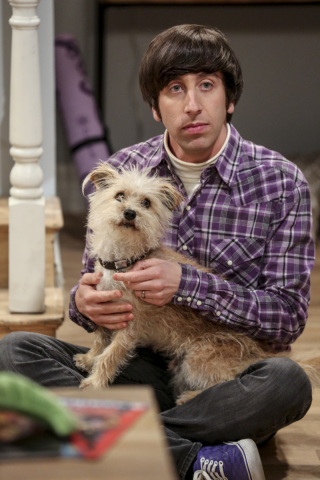 Here's why The Big Bang Theory is one of the worst TV shows in human history