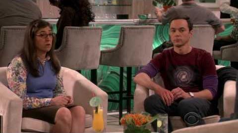 The Big Bang Theory - The Romance Recalibration S10E13 1080p