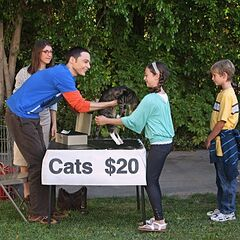 Take a cat, get twenty dollars.