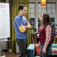 Sheldon and Amy arguing about their wedding plans.