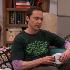 Sheldon complaining about the comic book store changes.