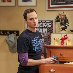 Sheldon packing.