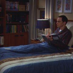 S03E13 - Sheldon is upset after a break-in