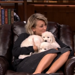 Kaley on The Tonight Show loving the puppies she won in a game with Jimmy Fallon.