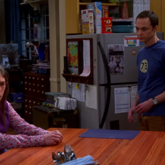 Sheldon didn't consult Amy about leaving Earth.
