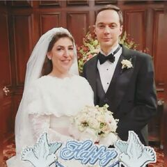 Sheldon and Amy Cooper.