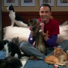 Sheldon and Zazzles.