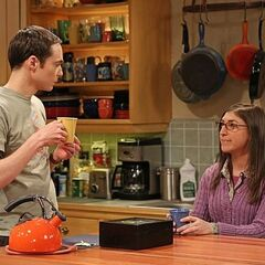 Amy helping Sheldon in his career.
