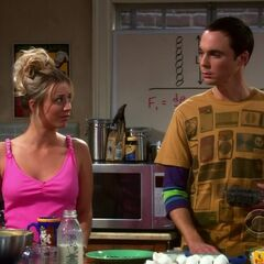 Penny and Sheldon not helping Leonard explanation of Penny to Stephanie.